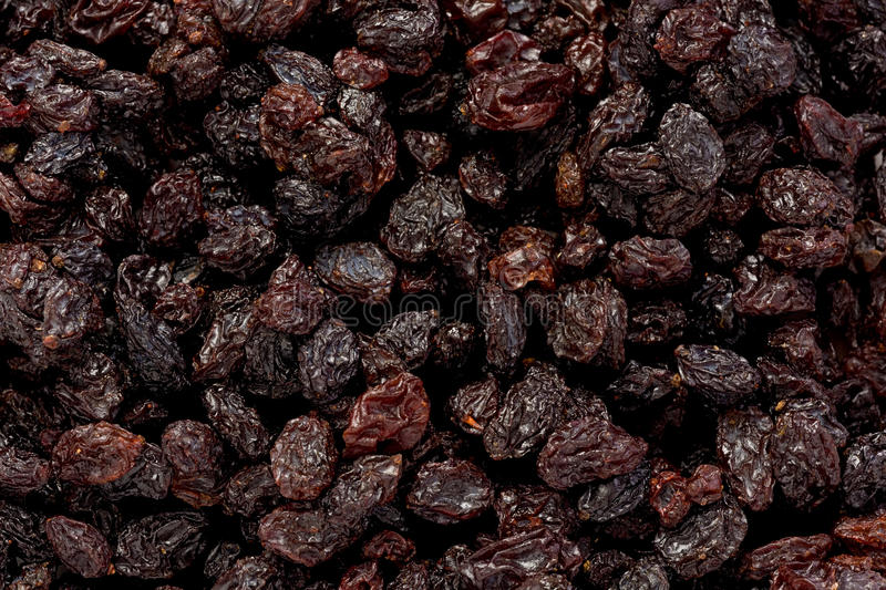 Dried Currants royalty free stock photography