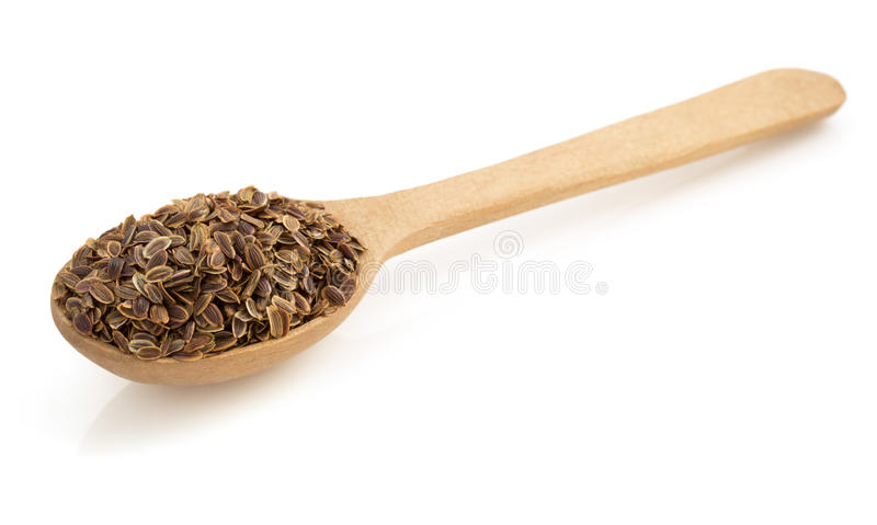 Dried dill seeds in spoon on white stock images