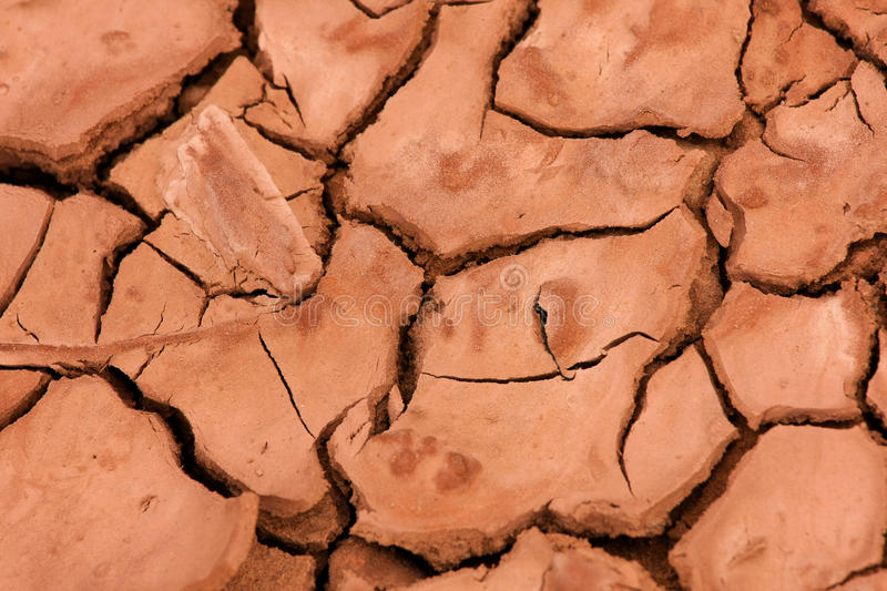 Dried earth royalty free stock photo
