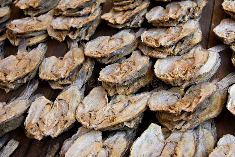 Download Dried fish stock photo. Image of salt, closeup, salty - 12847060