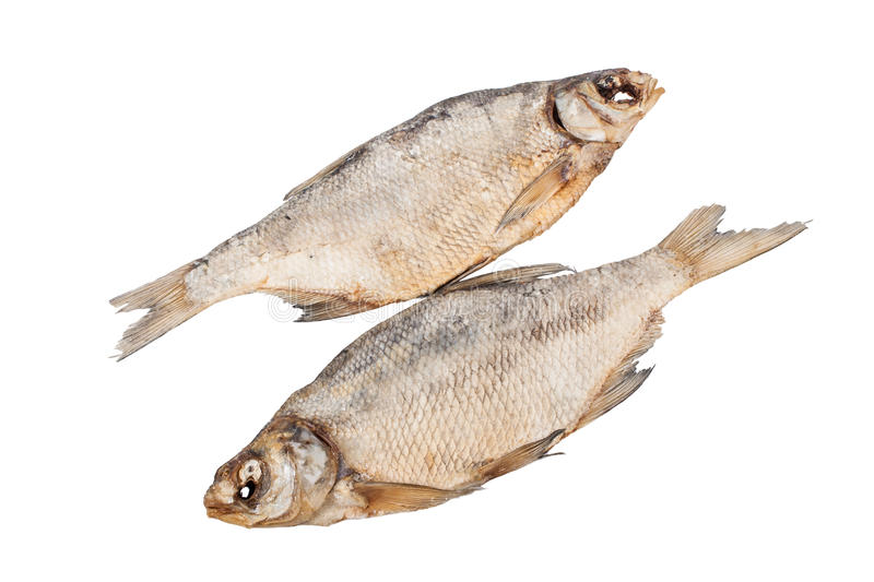 The Dried Fish Royalty Free Stock Photos