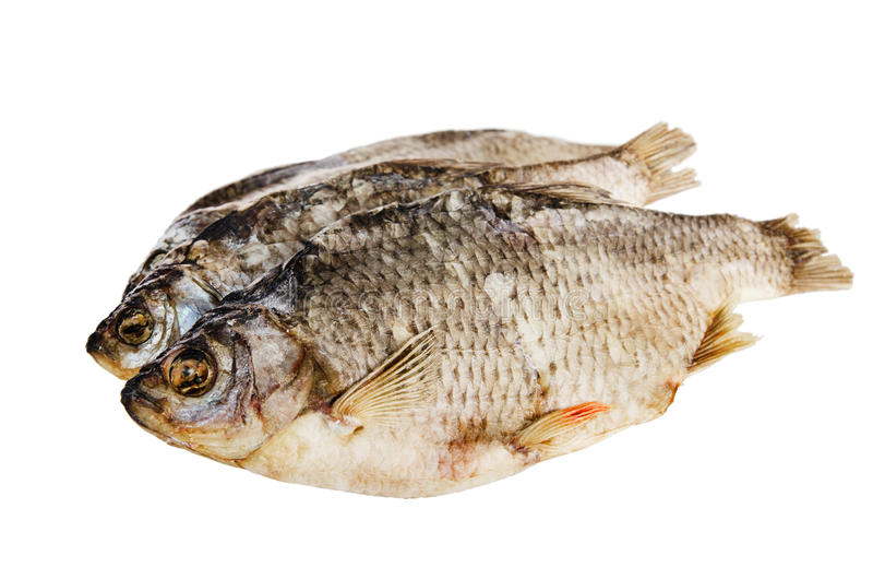 Download Dried fish stock photo. Image of nutrition, front, lake - 29033322