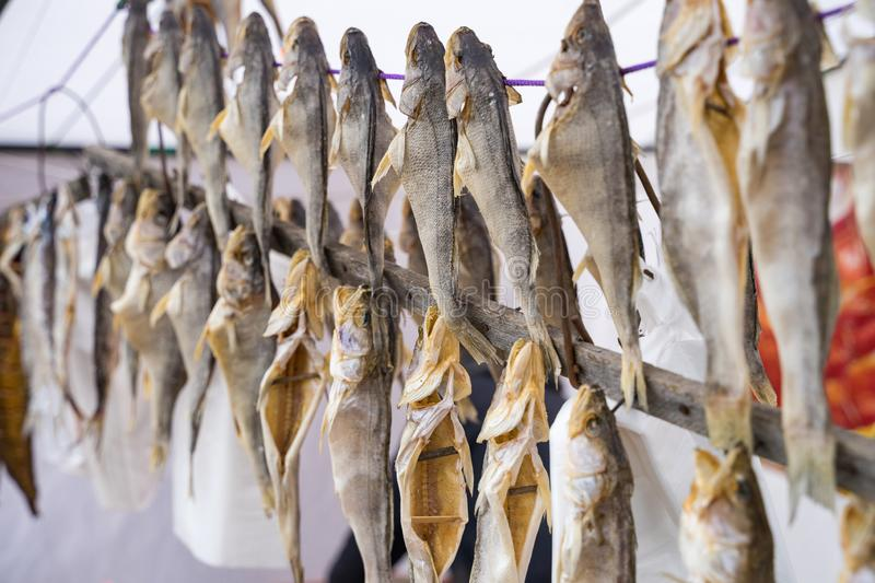 Dried fish on a rope sold at the fair. stock photo