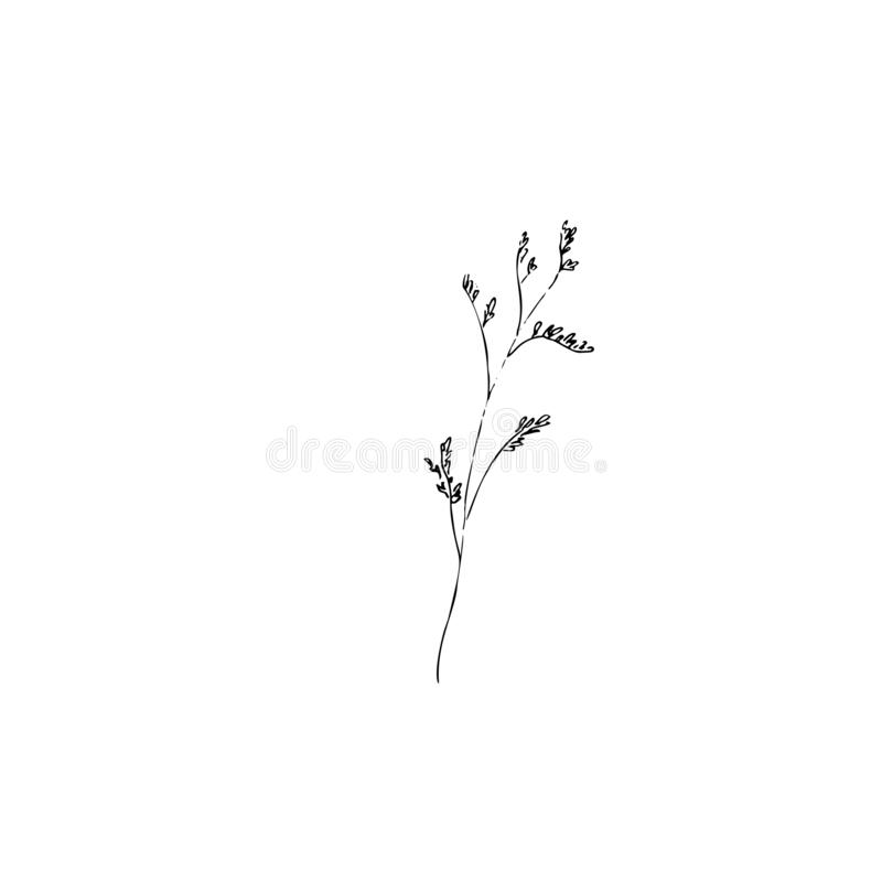 Pampas grass clipart Modern dried floral clipart. Autumn clipart with dried  grass decor png in Illustrations on Yellow Images Creative Store