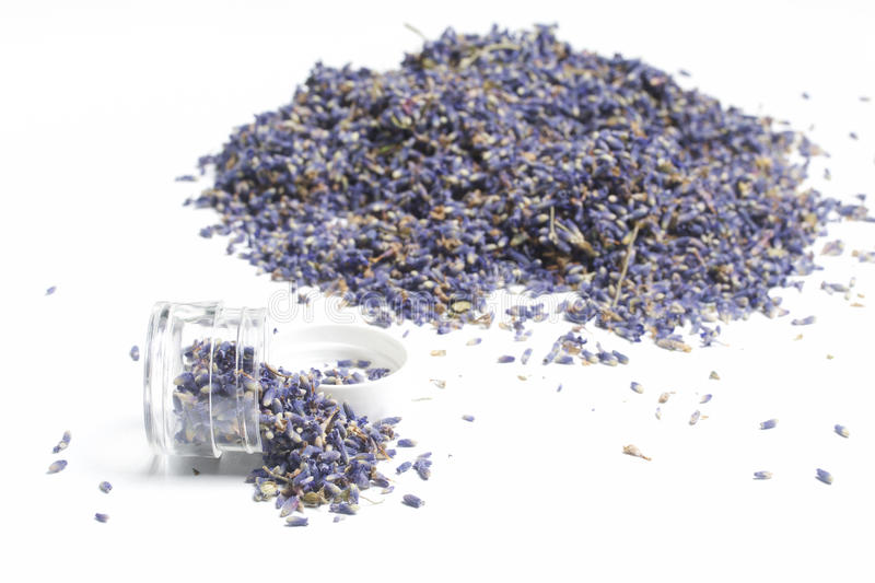 Dried flowers of lavender. stock photos