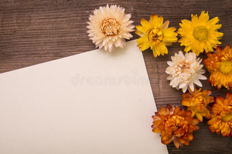 Dried Flowers on wood royalty free stock photos