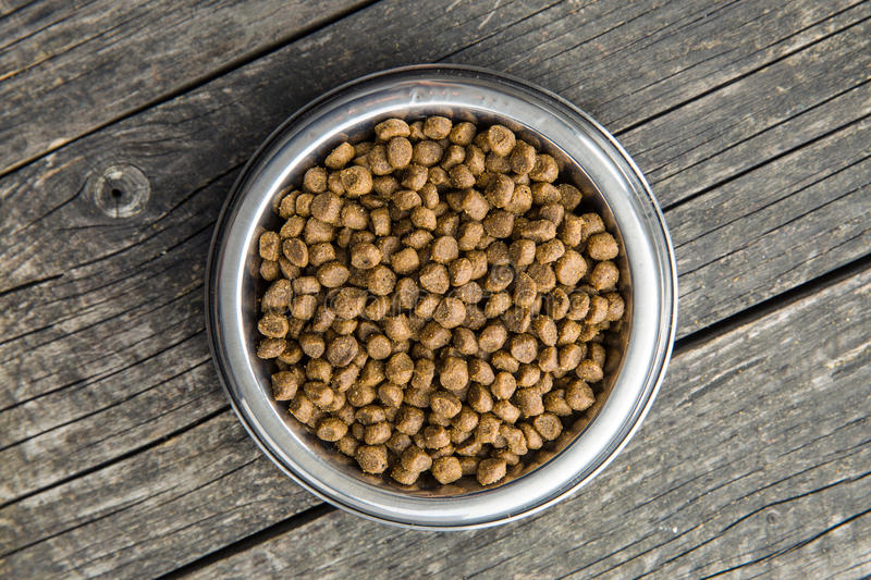 Dried food for dogs or cats. royalty free stock images