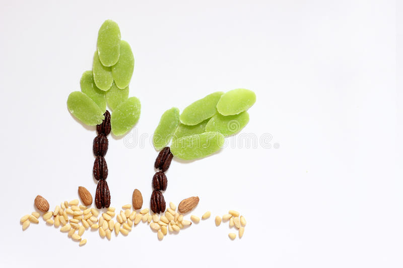 Dried fruits and almonds - symbols of judaic holiday Tu Bishvat. Trees made of dried fruits and almonds - symbols of judaic holiday Tu Bishvat royalty free stock photo