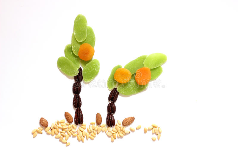 Dried fruits and almonds - symbols of Jweish holiday Tu Bishvat. Trees made of dried fruits and almonds - symbols of judaic holiday Tu Bishvat royalty free stock images