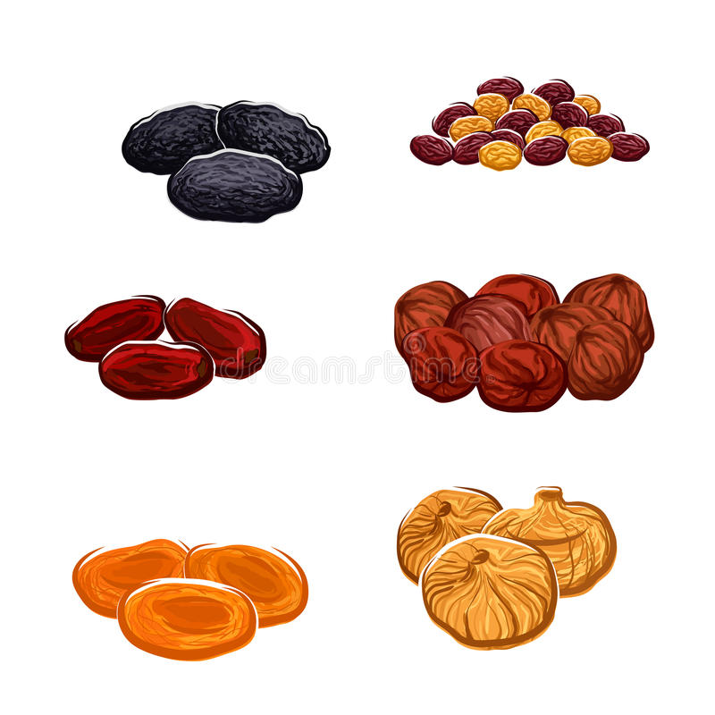 Dried fruits or berries isolated vector icons. Vector icons of dried fruits. Isolated raisins of grape, dates and juicy exotic figs, apricots, plums and black vector illustration