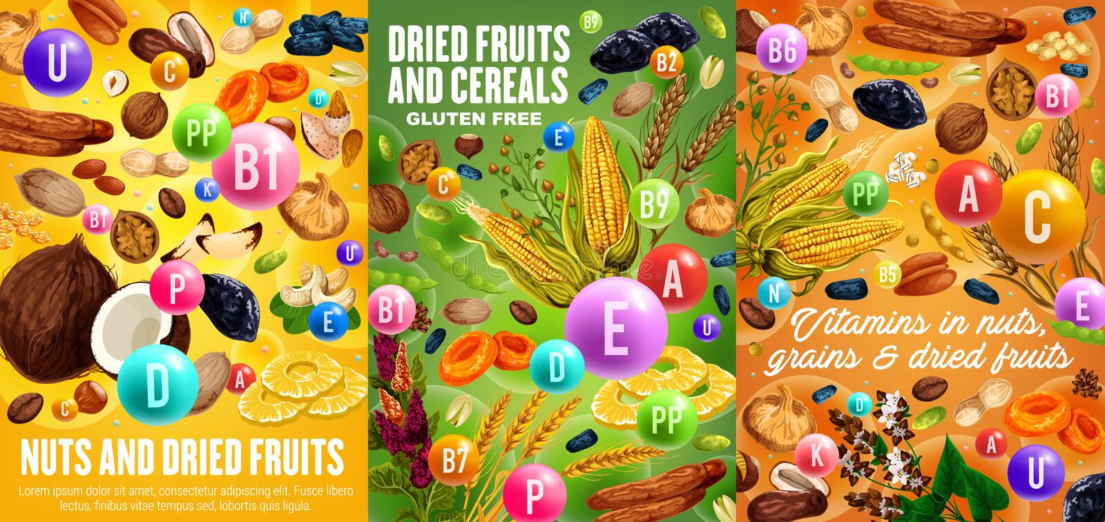 Dried fruits, nuts and cereals, vitamins. Nuts, cereals and dried fruits, vitamins and minerals in snacks. Vector gluten free grains and seeds, sweet raisins stock illustration