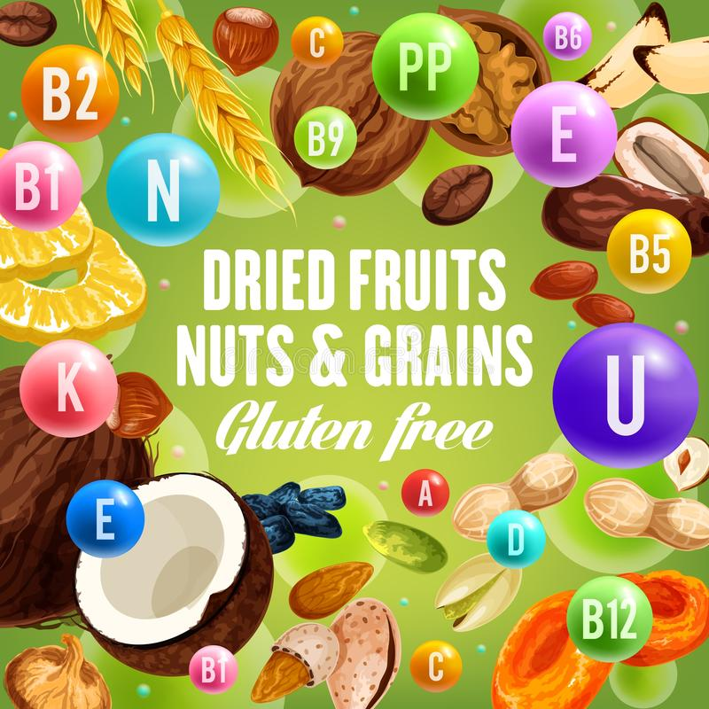 Dried fruits, nuts and grains, gluten free food. Nuts and grains, dried fruits and gluten free food. Vector vitamin complex and dietary nutrition or healthy food stock illustration