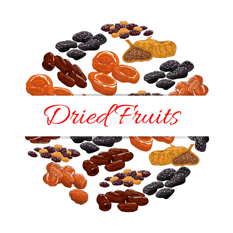 Dried fruits product emblem. Dried fruits decoration emblem. Vector elements of nutritious dried raisins, dates, figs, apricot, plum, prunes. Healthy snacks stock illustration