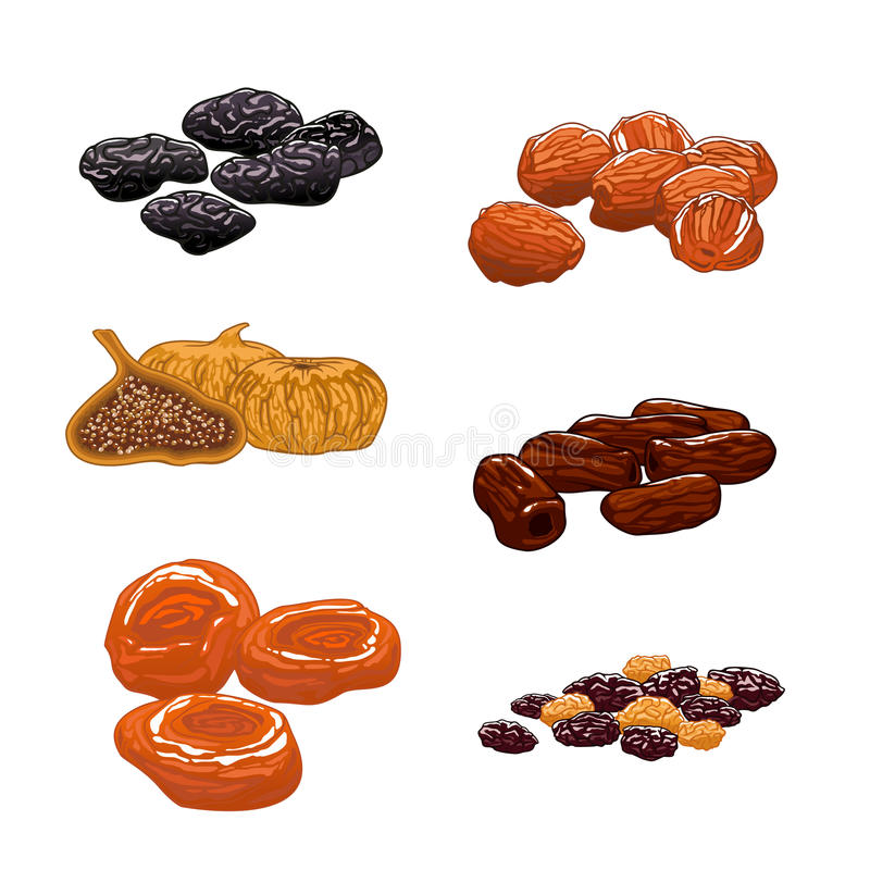 Dried Fruits set. Isolated vector icons stock illustration