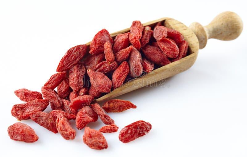 Dried goji berries royalty free stock image