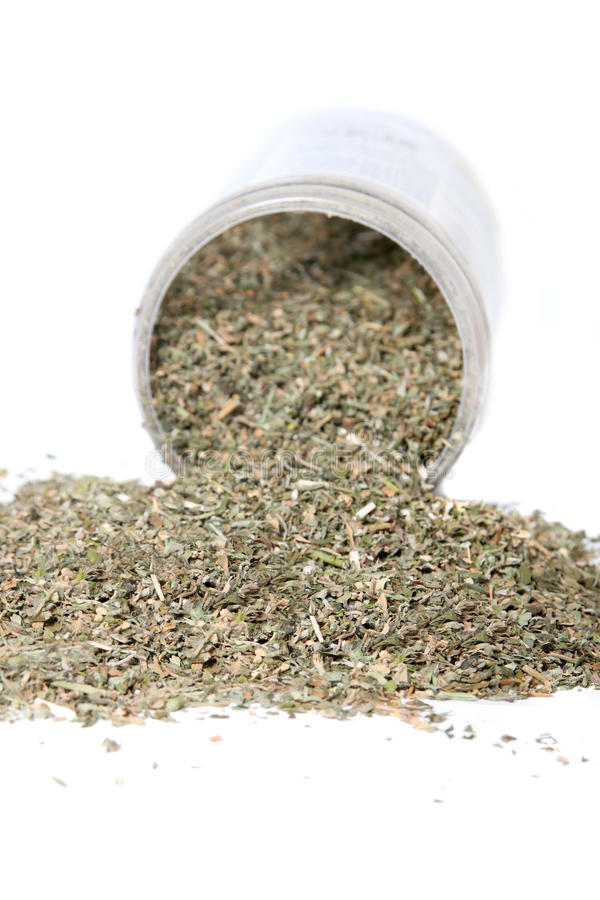 Dried green catnip spilling from container. Dried green catnip for cats spilling from container on a white background stock image