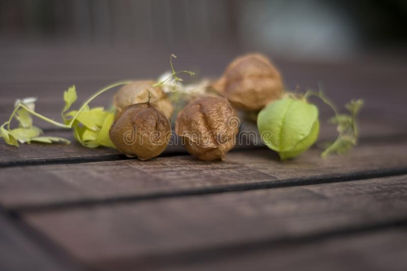 Dried and green fruits on wooden table stock photo
