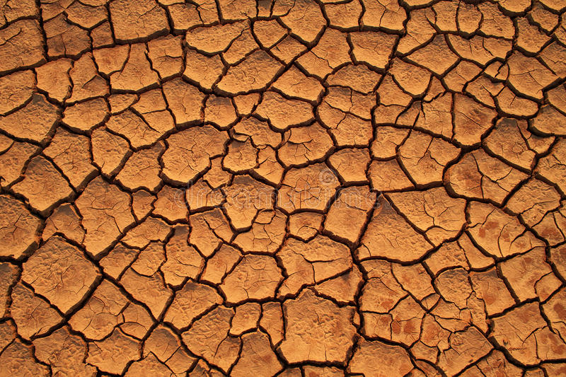 Dried Ground Texture Stock Photography