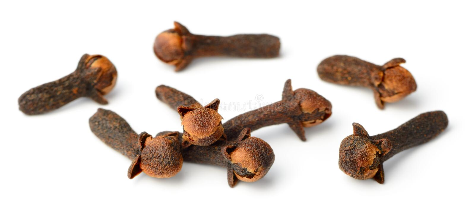 Dried herb, dried cloves isolated on white stock photography