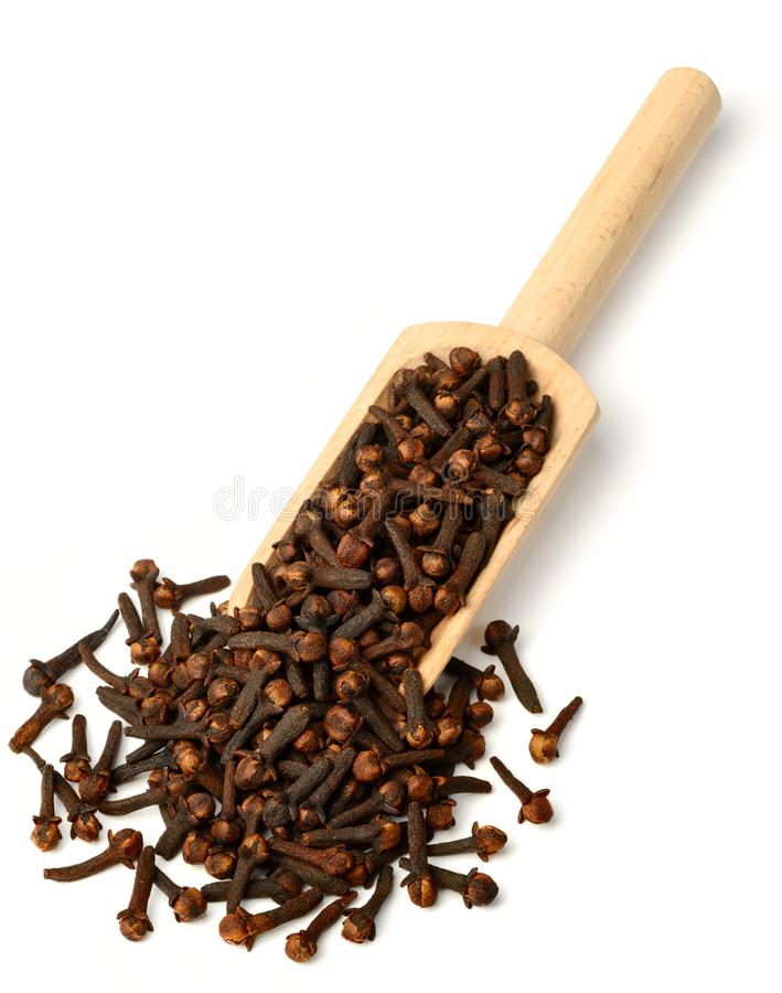 Dried herb, dried cloves in the wooden scoop, on white stock images