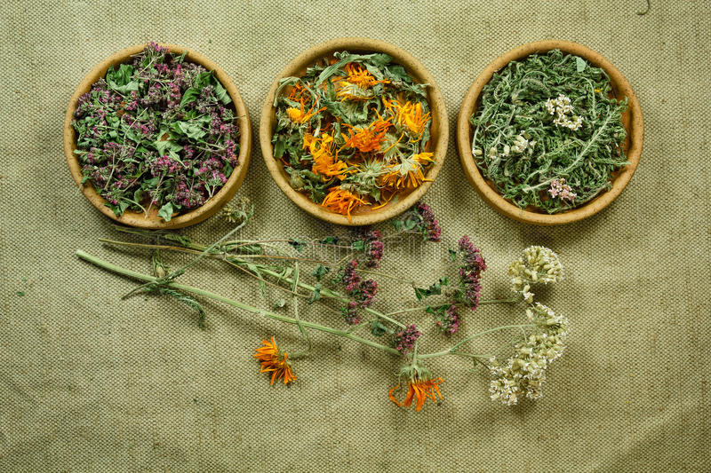 Dried. Herbal medicine, phytotherapy medicinal herbs. Dried herbs for use in alternative medicine. Herbal medicine, phytotherapy medicinal herbs. For stock photos