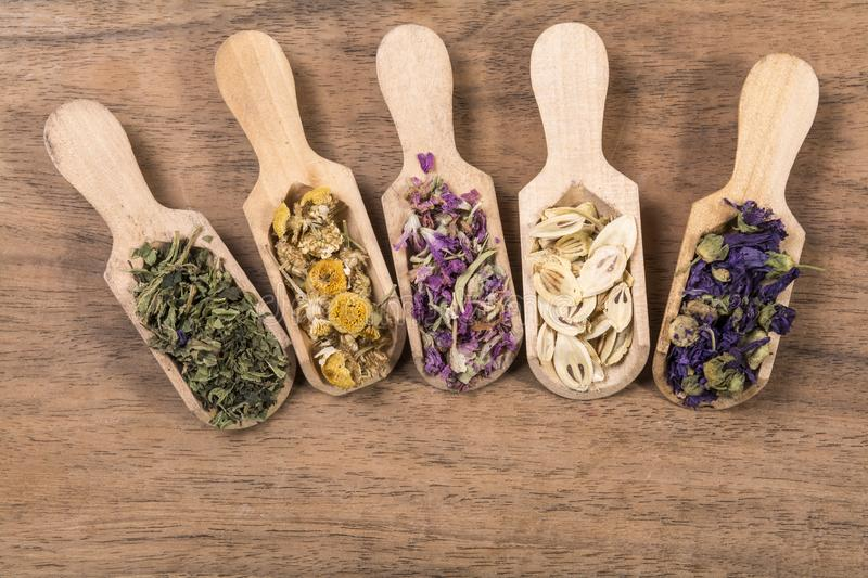 Dried herbal tea flowers. In wooden scoop on wooden background royalty free stock photos