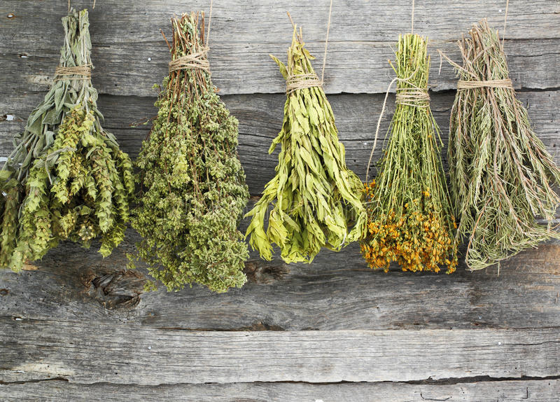 Dried herbs. Variety of dried herbs on an old wooden background royalty free stock photo