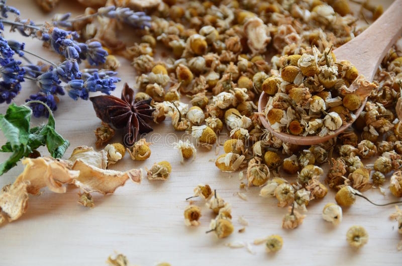 Dried herbs. Dried chamomile and other herbs and spices stock photos
