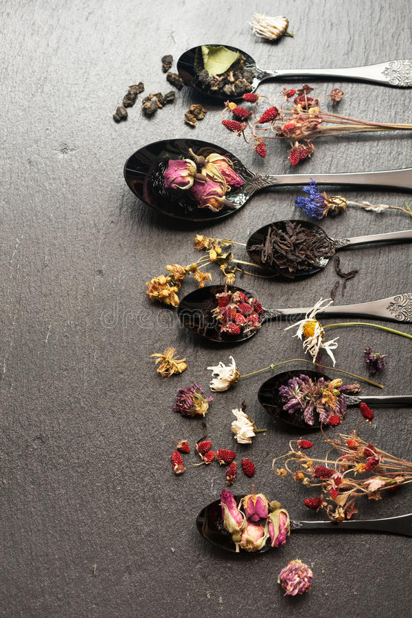 Dried herbs, berries and flowers and different flavored tea. Various teas and dried herbs in a vintage spoon. Top view, vertical royalty free stock photography