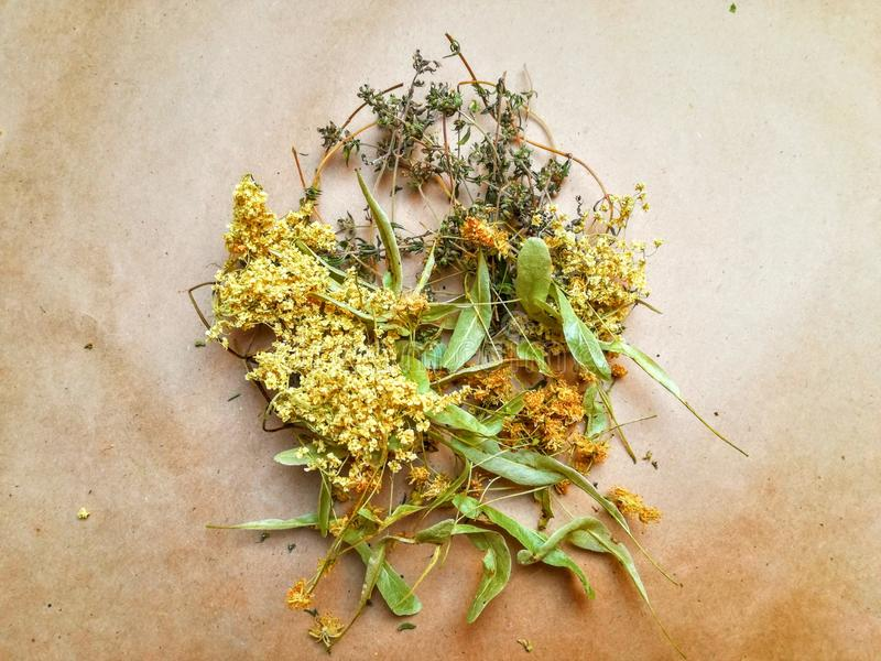 Dried herbs on paper. Dried herbs on brown paper royalty free stock photography