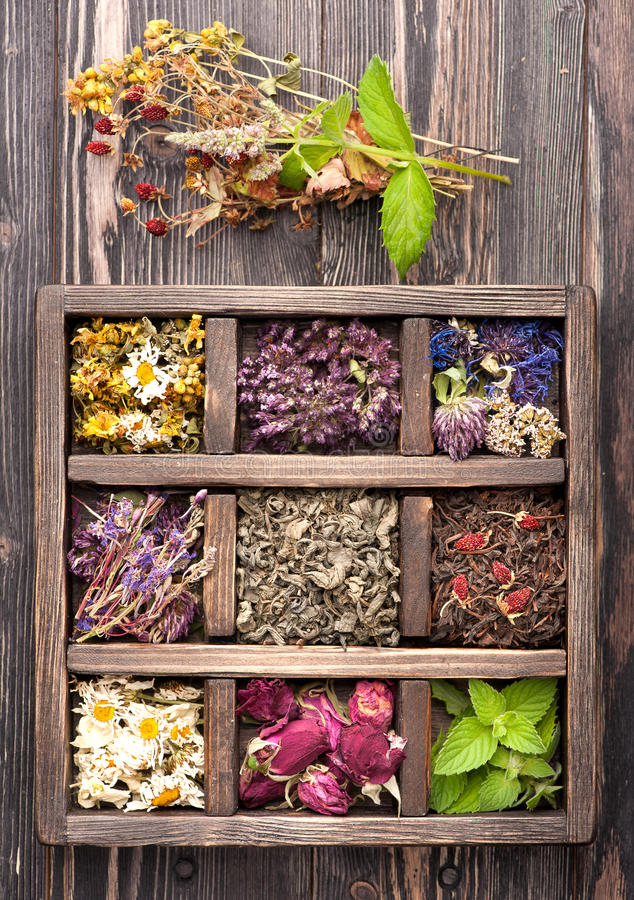 Dried Herbs and flowers royalty free stock photography