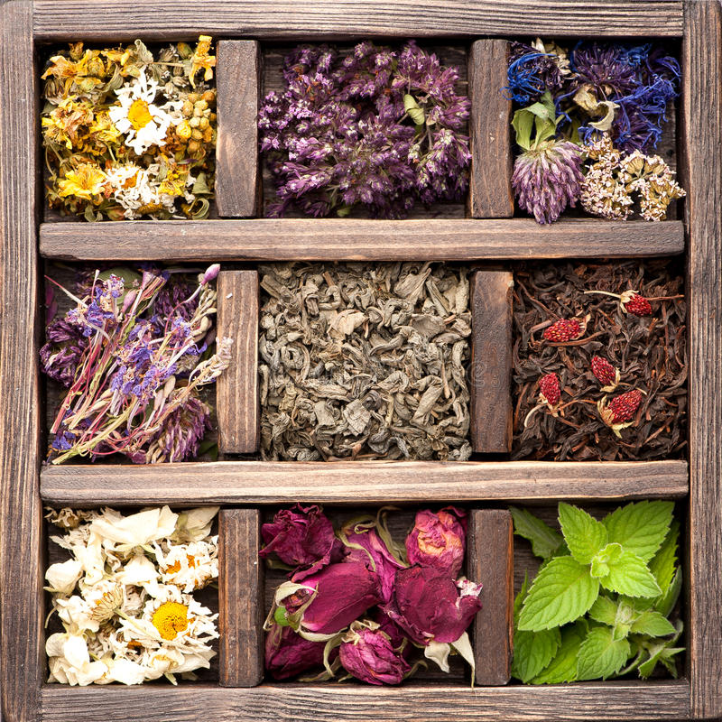 Dried Herbs and flowers. In vintage box. Collage stock images