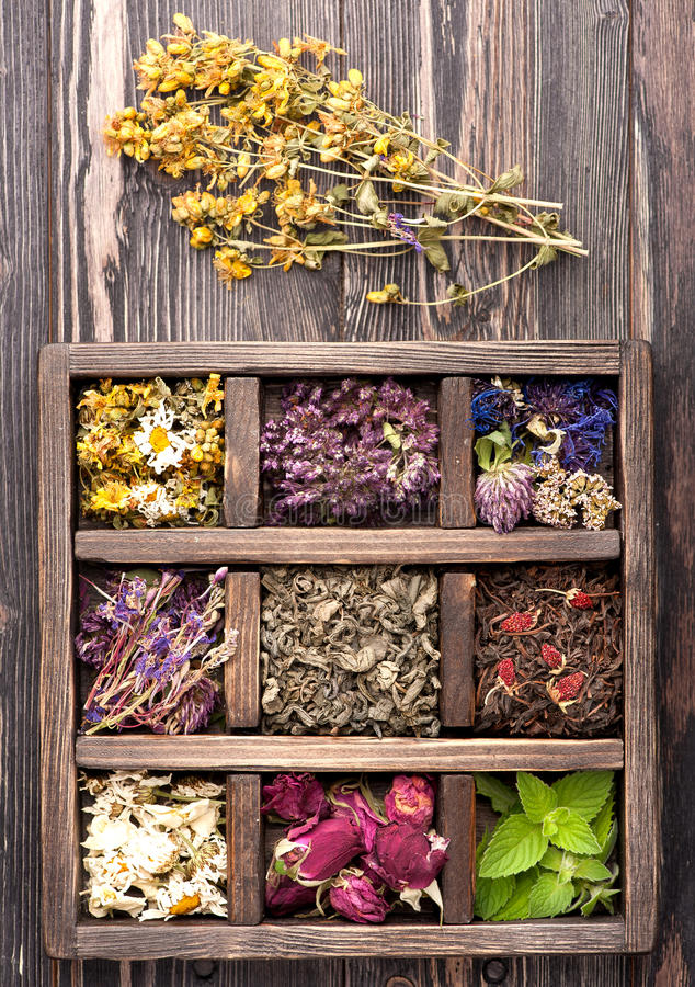 Dried Herbs and flowers. In vintage box on wooden background royalty free stock photo