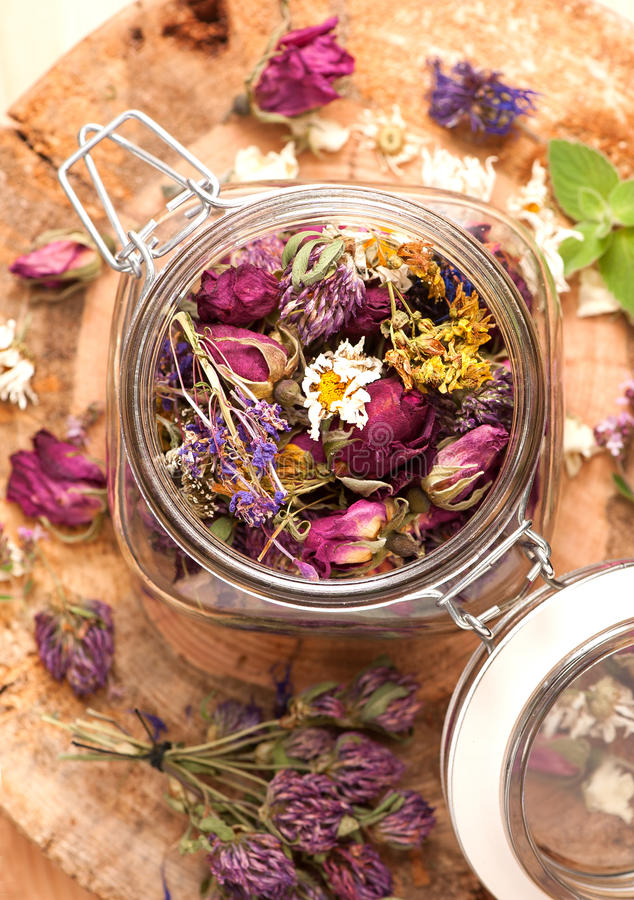Dried Herbs and flowers. On wooden background royalty free stock photography