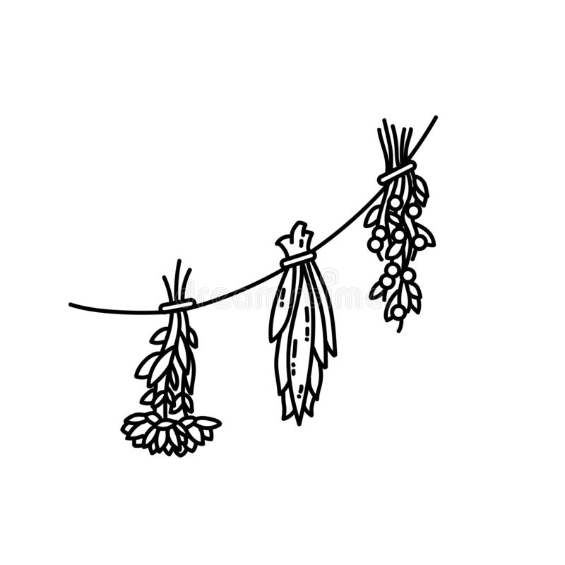 Dried herbs ornament. Flat style isolated image royalty free illustration