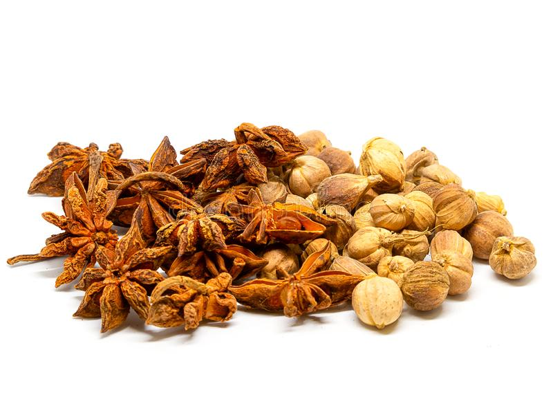 Dried Herbs , Siam Cardamom , Star anise spice fruits and seeds. Dried Herbs,Amomum krervanh Pierre,Siam Cardamom , and Star anise spice fruits and seeds stock photo