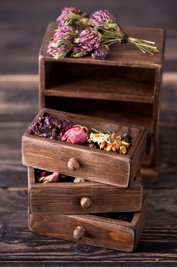 Dried herbs in wooden box. Dried medicinal herbs in wooden boxes royalty free stock images