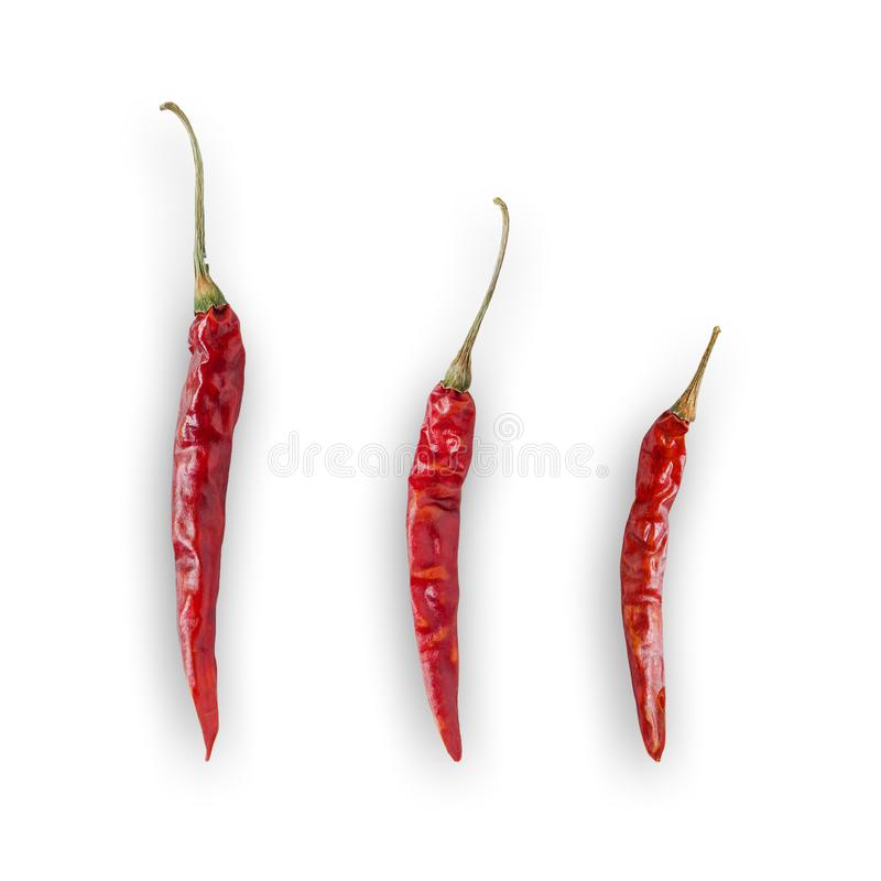 Dried and hot chili on white background for isolated with clipping path. stock photo