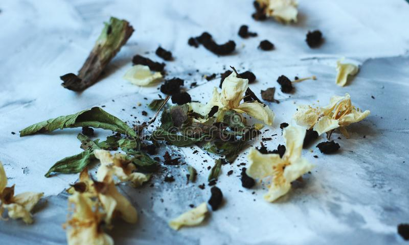Dried jasmine flovers and green tea on a grey background close royalty free stock photos