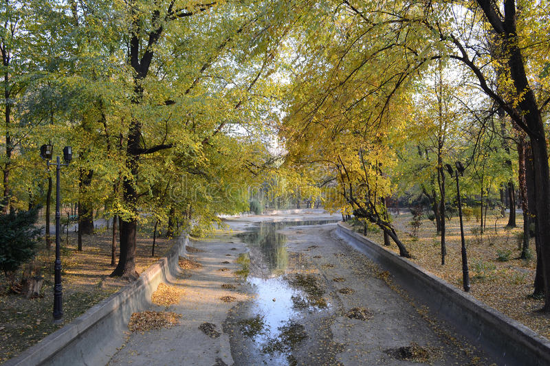 Download Dried Lake stock image. Image of fall, fallen, empty - 22037097