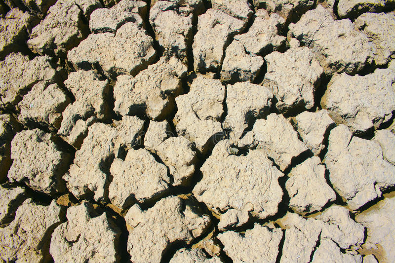 Download The dried lake stock image. Image of crust, lake, drought - 39501951