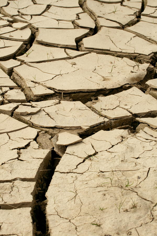 Download Dried lakebed stock image. Image of crack, life, more - 11248553