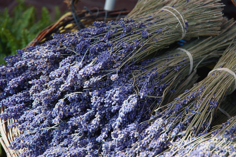 Dried Lavendar in Provence Market stock photography