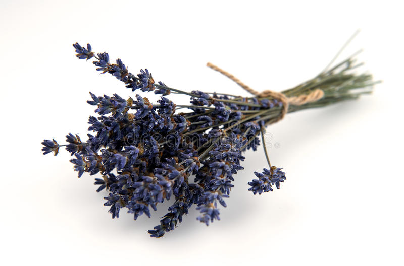 Download Dried Lavender Bouquet Isolated On White Background Royalty Free Stock Photo - Image: 33269695