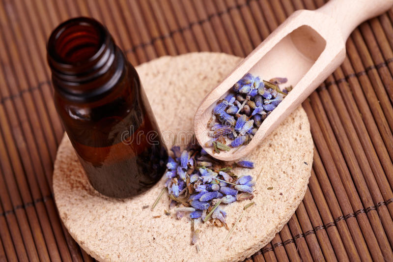 Dried lavender petals with macerated oil stock photo