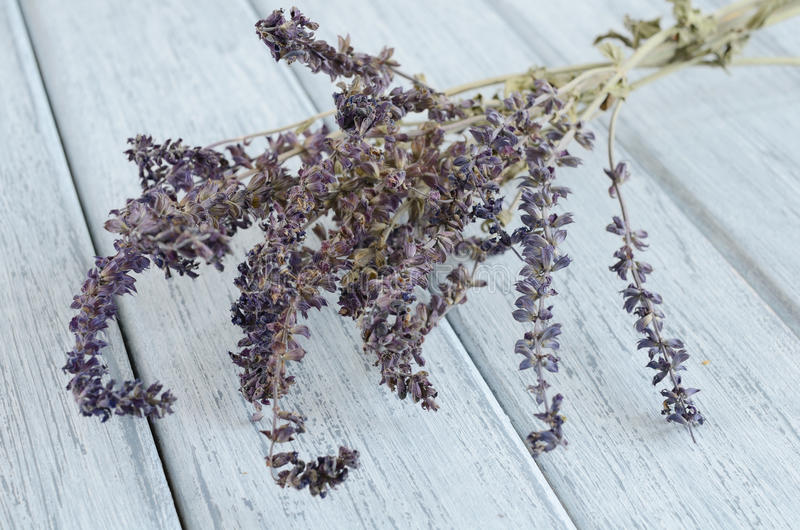 Dried lavender on wooden background