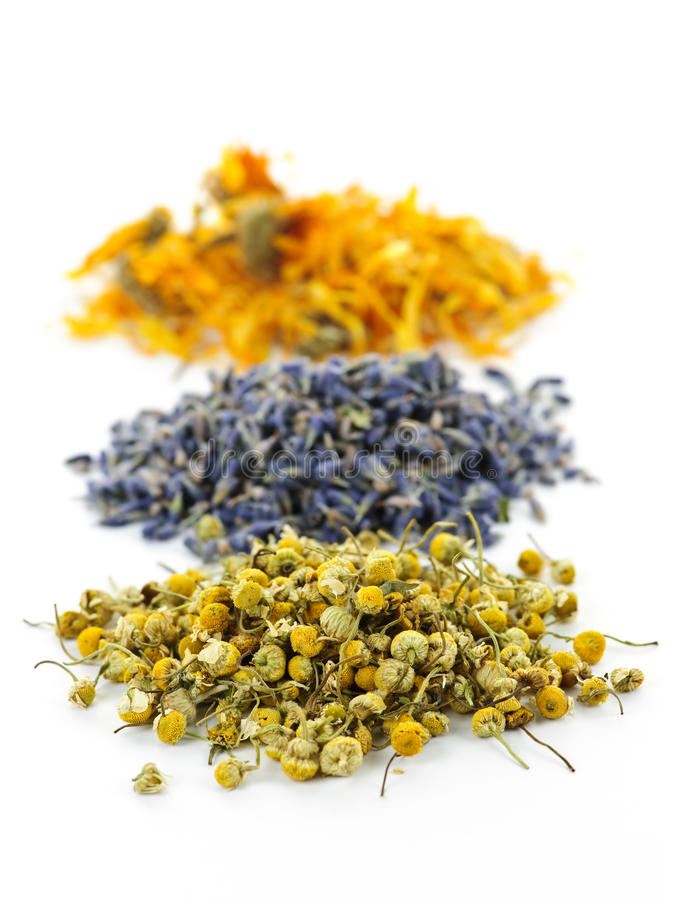 Dried medicinal herbs. Piles of dried medicinal herbs camomile, lavender, calendula on white background royalty free stock images