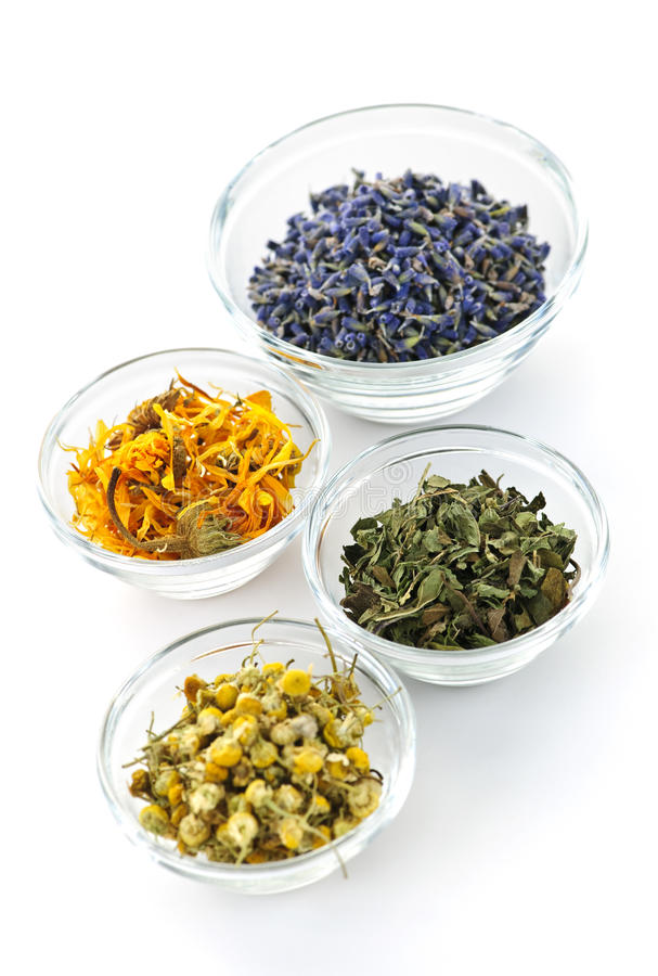 Download Dried medicinal herbs stock photo. Image of natural, four - 16249034