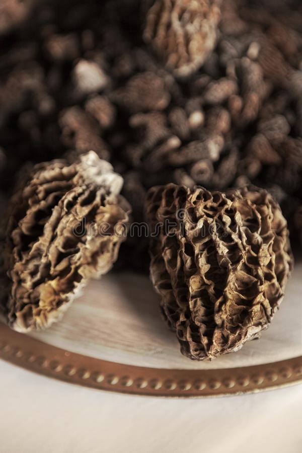 Dried morels on a market stall royalty free stock photography