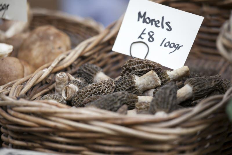 The Dried Morels Morchella vulgaris at La Boquera market, Barcelona. Catalonia, Spain stock photography